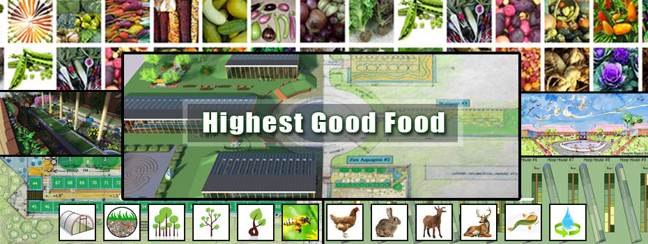 Highest Good food, sustainable food, eco food, DIY food, food security, One Community food, green living, food self-sufficiency