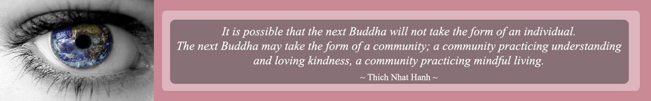Thich Nhat Hanh Quote, The Next Buddha, one community