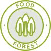 foresta alimentare, coltivare cibo, buoni alimenti, alimenti naturali, alimenti open source, alimenti di One Community, sottobosco, viti, arbusti, erbe, copertura del terreno, radici commestibili, piante di confine, cibo organico, cibo delizioso, giardino botanico, cresci il tuo proprio cibo