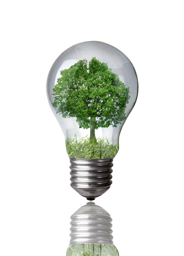CFL vs incandescent  green energy  free lightbulbs  efficient lightbulbs  light  bulbs. CFL vs Incandescent Bulbs  An Overview of an Energy Efficiency