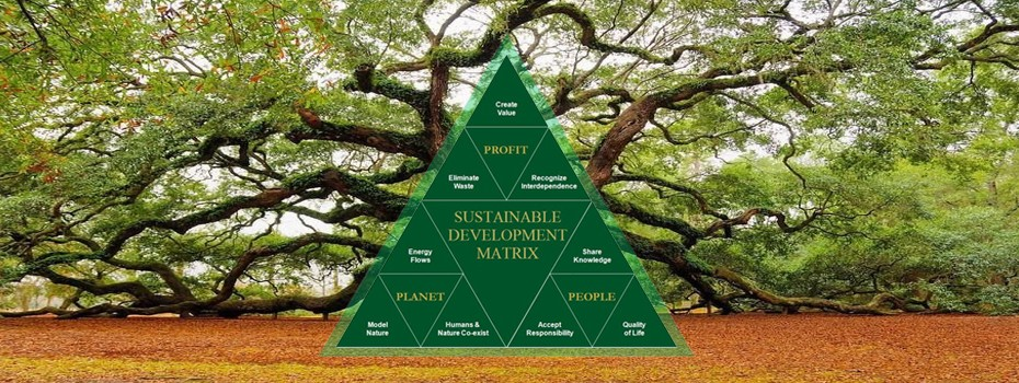 project decision making, green development strategy, ecological sustainable development