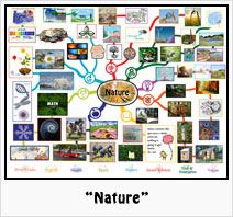 """""""Nature"""" Lesson Plan: Teaching all subjects in the context of Nature"""