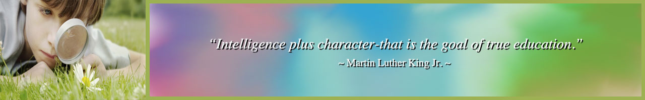 intelligence-plus-character-quote