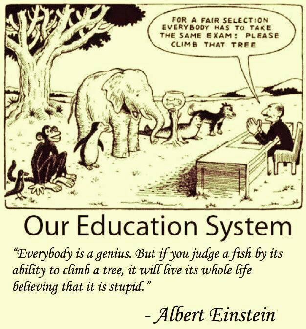 Highest Good Education