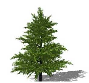 how to make a tree in sketchup