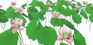 Sketchup, Water and bog plants, Nelumbo/water lotus