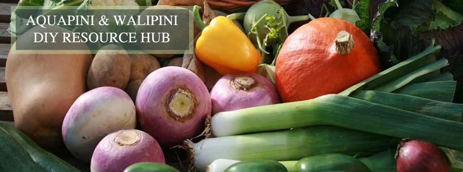 Global Organic Food  Marketline