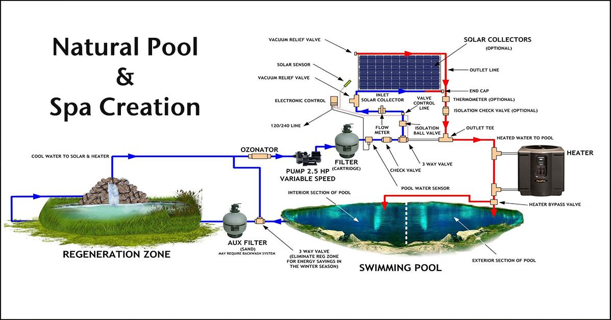 natural pool spa duplicable city center natural pool spa page rh onecommunityglobal org