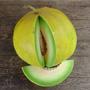 Boule d'Or Melon, One Community