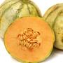 Charentais Melon, One Community