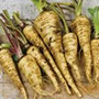 Hollow Crown Parsnips, One Community