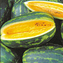 Mountain Sweet Yellow watermelon, One Community