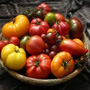 Tomatoes, One Community