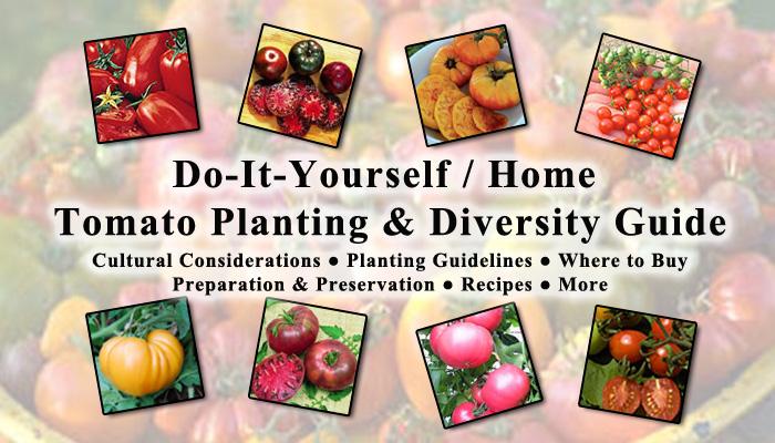 Garden Planting Guide