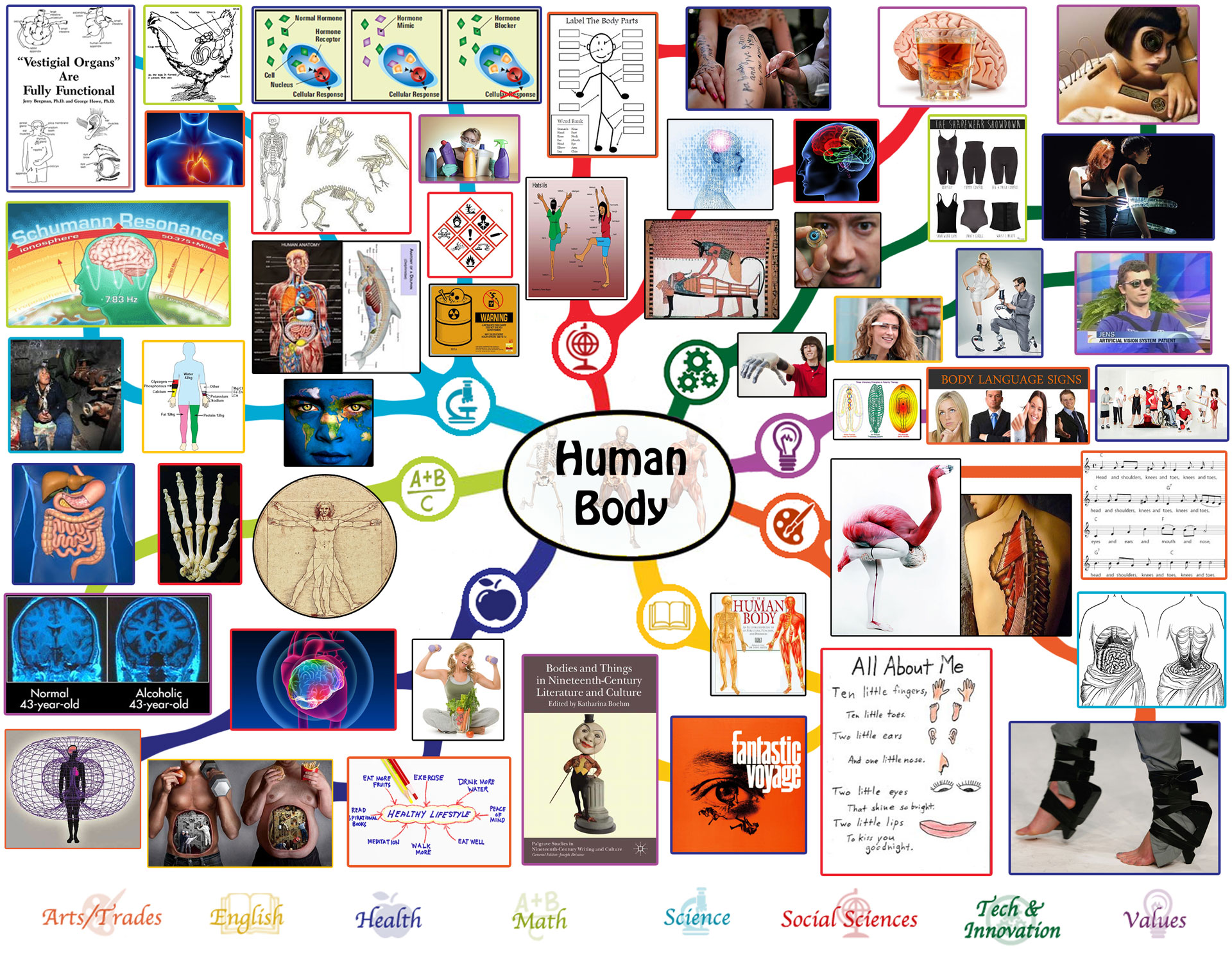 Human Body Lesson Plan All Subjects Any Age Any Learning Environment Open Source And Free Shared