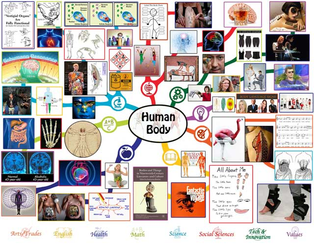 Human Body Mindmap Complete, One Community