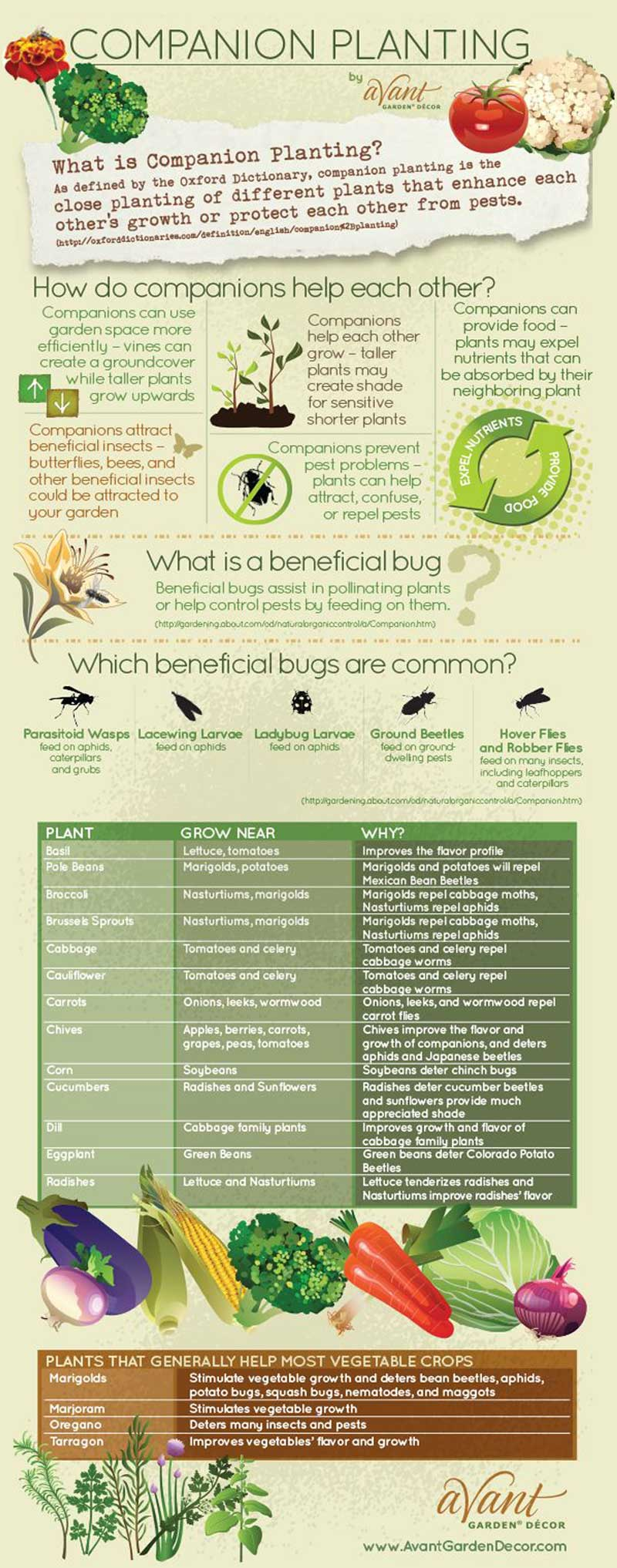 Large-scale Gardening, Companion Planting, Plant Spacing