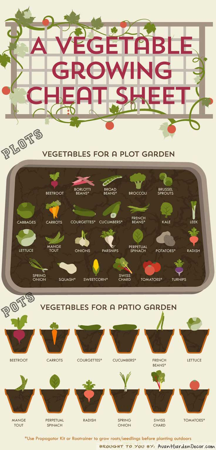 A vegetable growing cheat sheet, large-scale gardenting