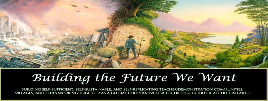 Building the Future We Want