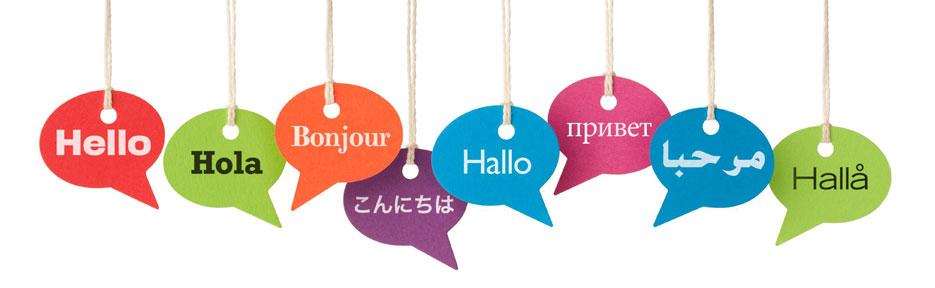 Translation page header