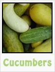 cucumbers, gardening, planting, growing, harvesting, one community, recipes
