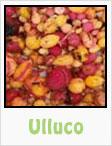 ulluco, gardening, planting, growing, harvesting, one community, recipes