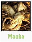 mauka, gardening, planting, growing, harvesting, one community, recipes