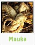 mauka, gardening, planting, growing, harvesting, one community, recipes
