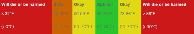 worm temperature details