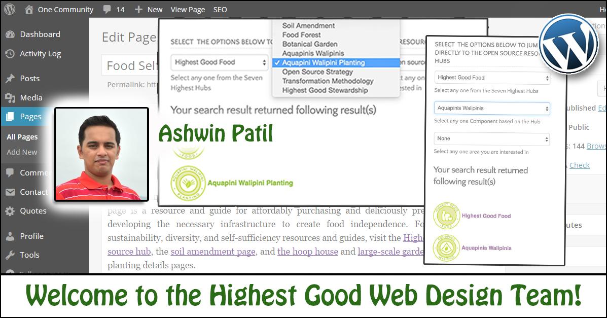 Web Design Consultant Resume