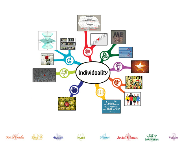 We also completed the first 25% of the mindmap for the Individuality Lesson Plan
