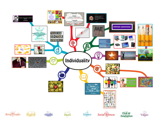 We also completed the second 25% of the mindmap for the Individuality Lesson Plan