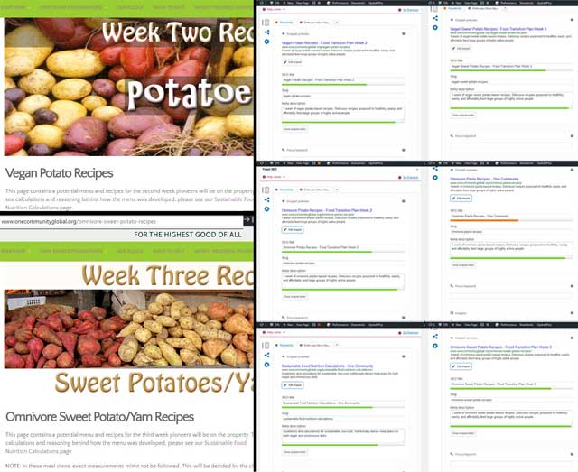 This week, the core team worked on renaming our recipe pages and adding SEO descriptions on our Transition Kitchen pages.