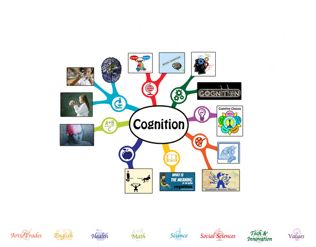 We also completed the first 25% of the mindmap for the Cognition Lesson Plan, bringing it to 25% complete, which you see here: