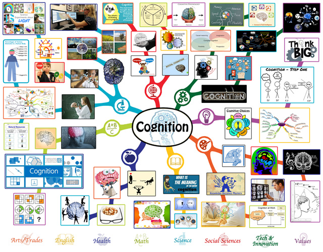 We also completed the second 50% of the mindmap for the Cognition Lesson Plan, bringing it to 100% complete, which you see here: