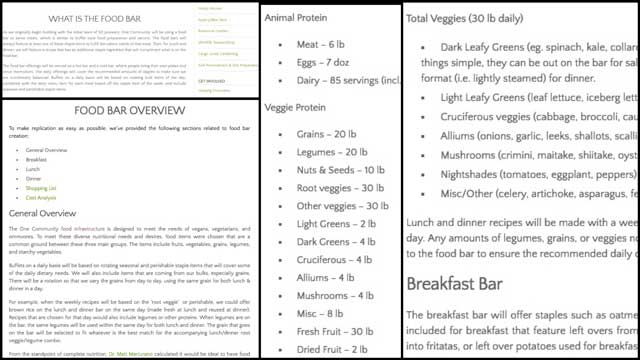 "This week, the core team edited and added information to the ""What Is"" and ""Overview "" sections of the Food Bars page, as you see here, bringing the page to approximately 18% completion."