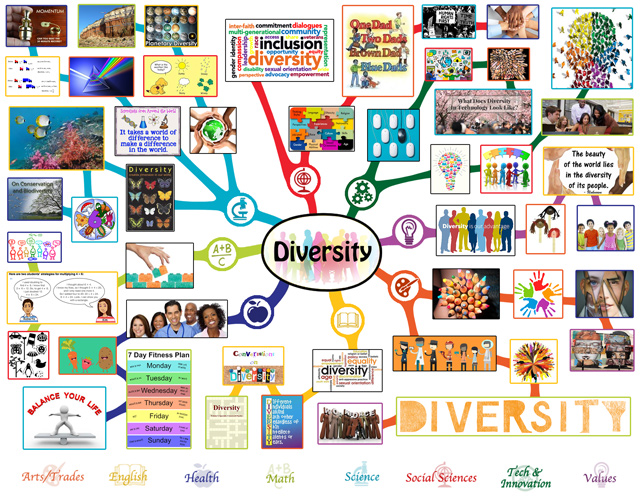 Diversity Lesson Plan - One Community