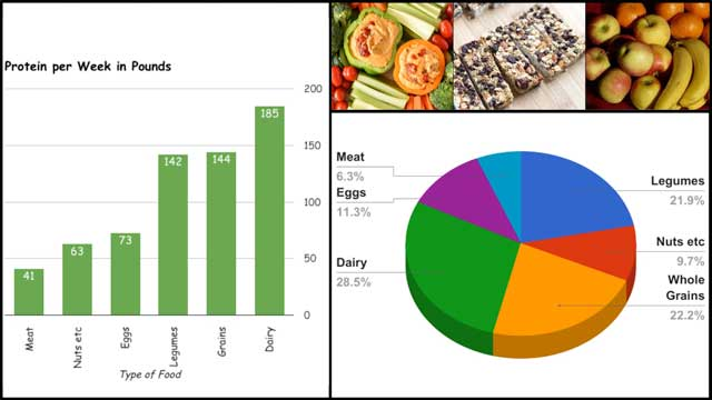 This last week, the core team created 2 additional new images for the Sustainable Food Nutrition Calculations page and one additional image for the Food Self-sufficiency Transition Plan page, as you see here: